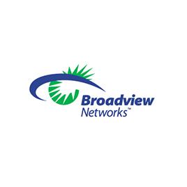 Broadview Network Holdings