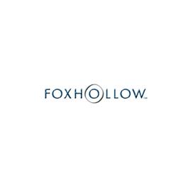Fox Hollow Technologies