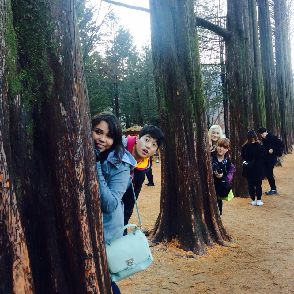 NSLI-Y students posing on Nami's Islands famous trees.