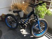 Bici HUFFY FAT tyre (llanta ancha) Aro 20