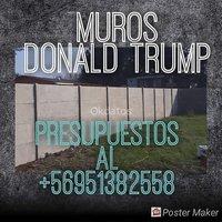 PANDERETAS DE BULLDOG SANTIAGO 951382558