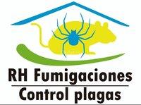 Fumigaciones Villarrica Alrededores
