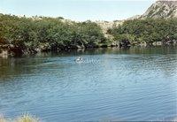 Se Venden 2355 Hectareas Sur de Chile.