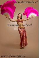 Show de Danza del Vientre, Odaliscas para Fiestas