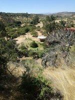 Quincanque, San Pedro