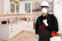 Control de Plagas, Desratización y Fumigación