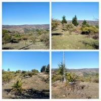 Excelentes terrenos con vegetación y buena vista