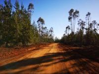 Parcelas Costas de Pichilemu, Granplusvalia,5000m² avisos clasificados gratis
