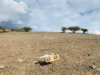 Parcelas Costas de Pichilemu. gran plusvalia. avisos clasificados gratis