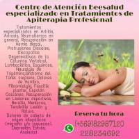 Apiterapia Beesalud Medicina Natural