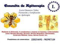 Apiterapia Tratamiento con Apitoxina de la Abeja