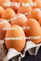 Huevos sin hormonas de gallinas libres