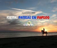 Arriendo deptos fiestas patrias en Papudo