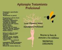 Apiterapia Tratamiento Profesional con Abejas