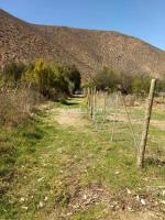 Terreno 6.000 m2 Cancha Brava - Salamanca