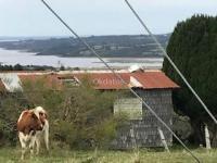 venta 12 hectareas comuna los muermos avisos clasificados gratis