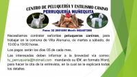 SE SOLICITA PELUQUERA CANINA