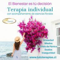 TERAPIA INDIVIDUAL con esencias Florales