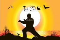aprender la clase taichi con maestro asiatico