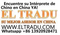 Traductor interprete Chino Español Qingdao china