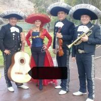 los mejores Mariachis y Serenatas