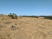 Reserva Nacional, Playa y Linda Vista