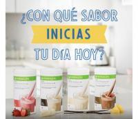 Distribuidor Herbalife Nutrition