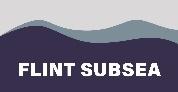 Flint Subsea - Dockstr