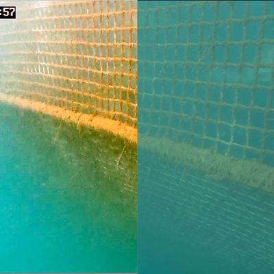 Underwater video enhancement software