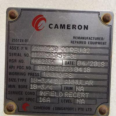 Cameron 18 3/4 Annular BOP