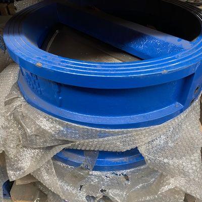 Dual disc check valve
