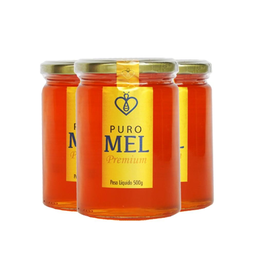 "03 UN Mel Puro Premium 500g Florada Silvestre ""Blend"" Fino de mesa HerboMel Natural"