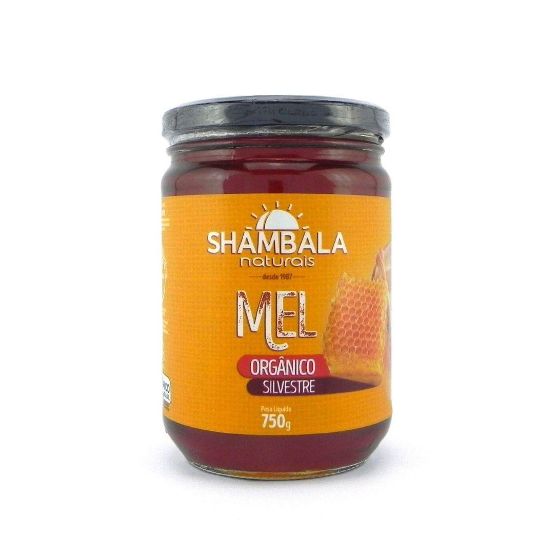 Mel Silvestre Orgânico 750g Shambala