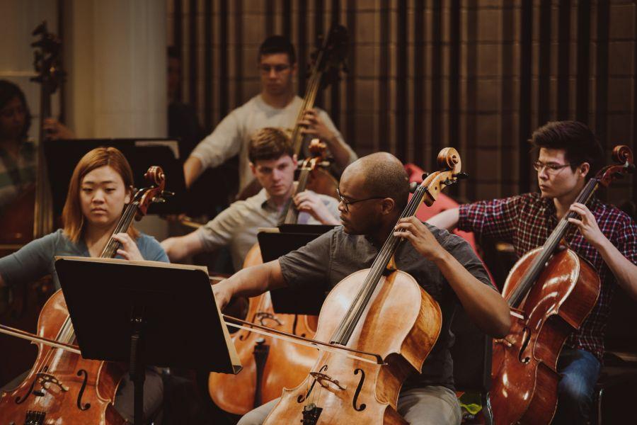 Mannes cellos