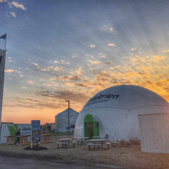 Snapseed Dome