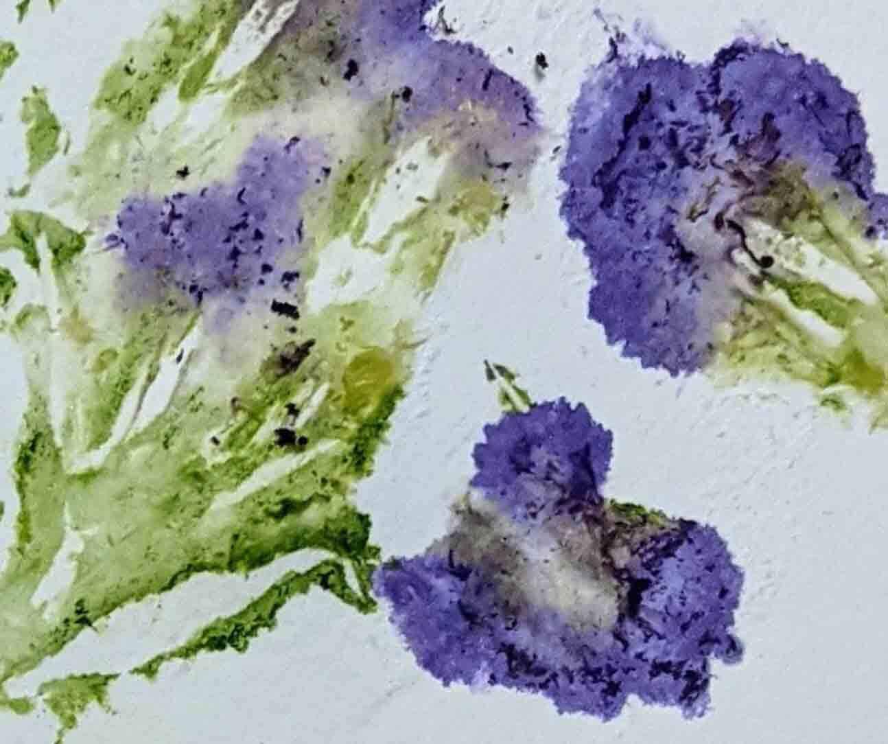 Drop-in Art Making Eco Prints