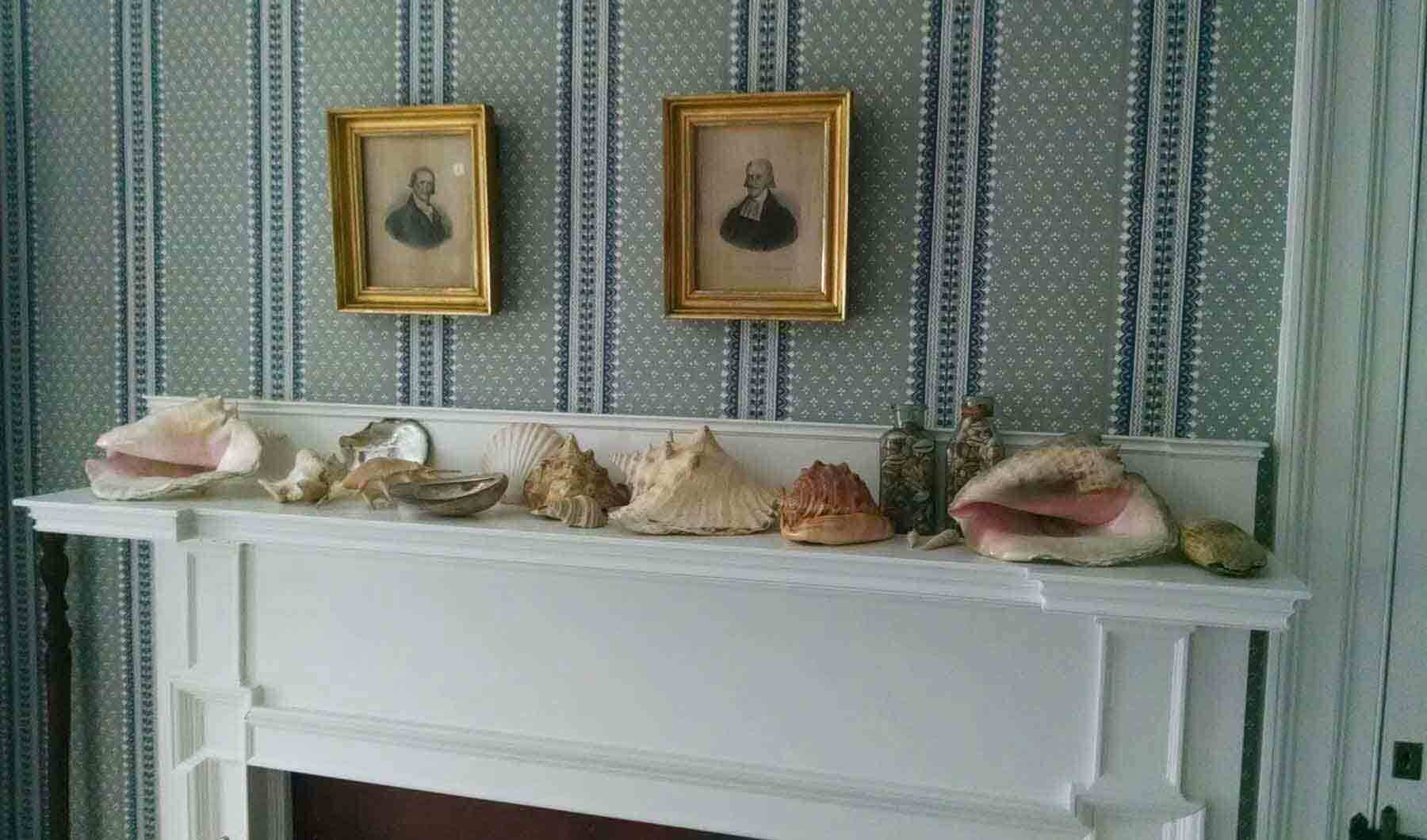 An interior view of a fireplace mantle wth shells in teh Ropes Mansion