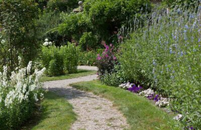 A stone pathway meanders through a vibrant garden