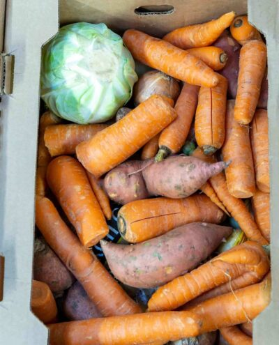 A cardboard box filled with carrots, sweet potatoes, lettuce and onions