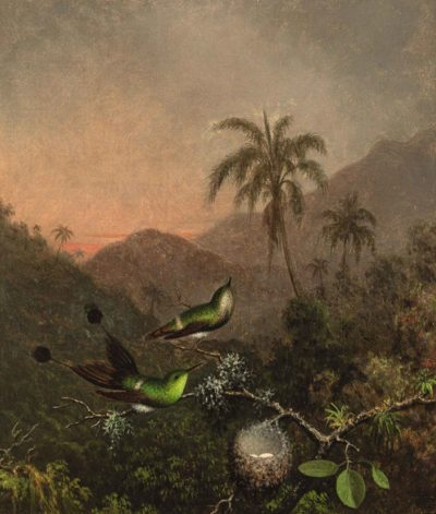 Martin Johnson Heade, Two Green-Breasted Hummingbirds, 1863-64