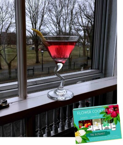 A red drink in a cocktail glass sits on a windowsill with a view to a grass filled park outside