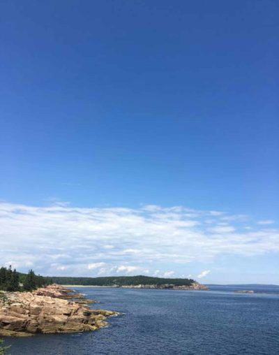 The exposed rocks of Acadia's coastline