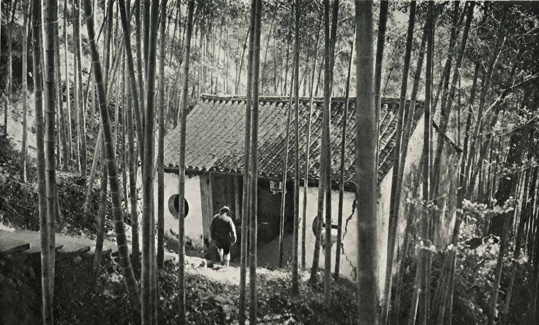 Pavilion over ravine and bamboo grove in Chinese garden, circa 1949