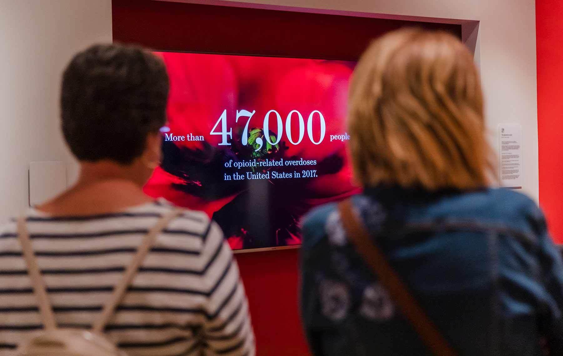 visitors viewing opium video in aea gallery