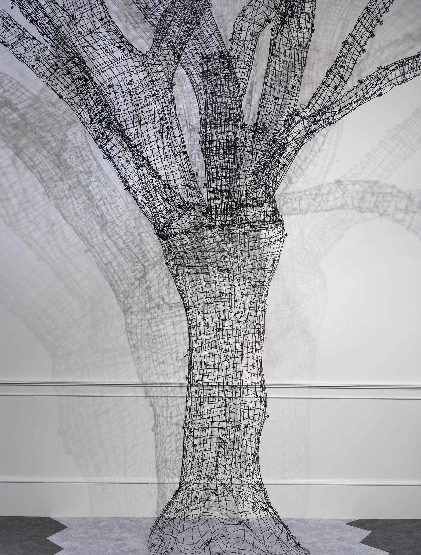expod_shadowtree1.jpg#asset:13237