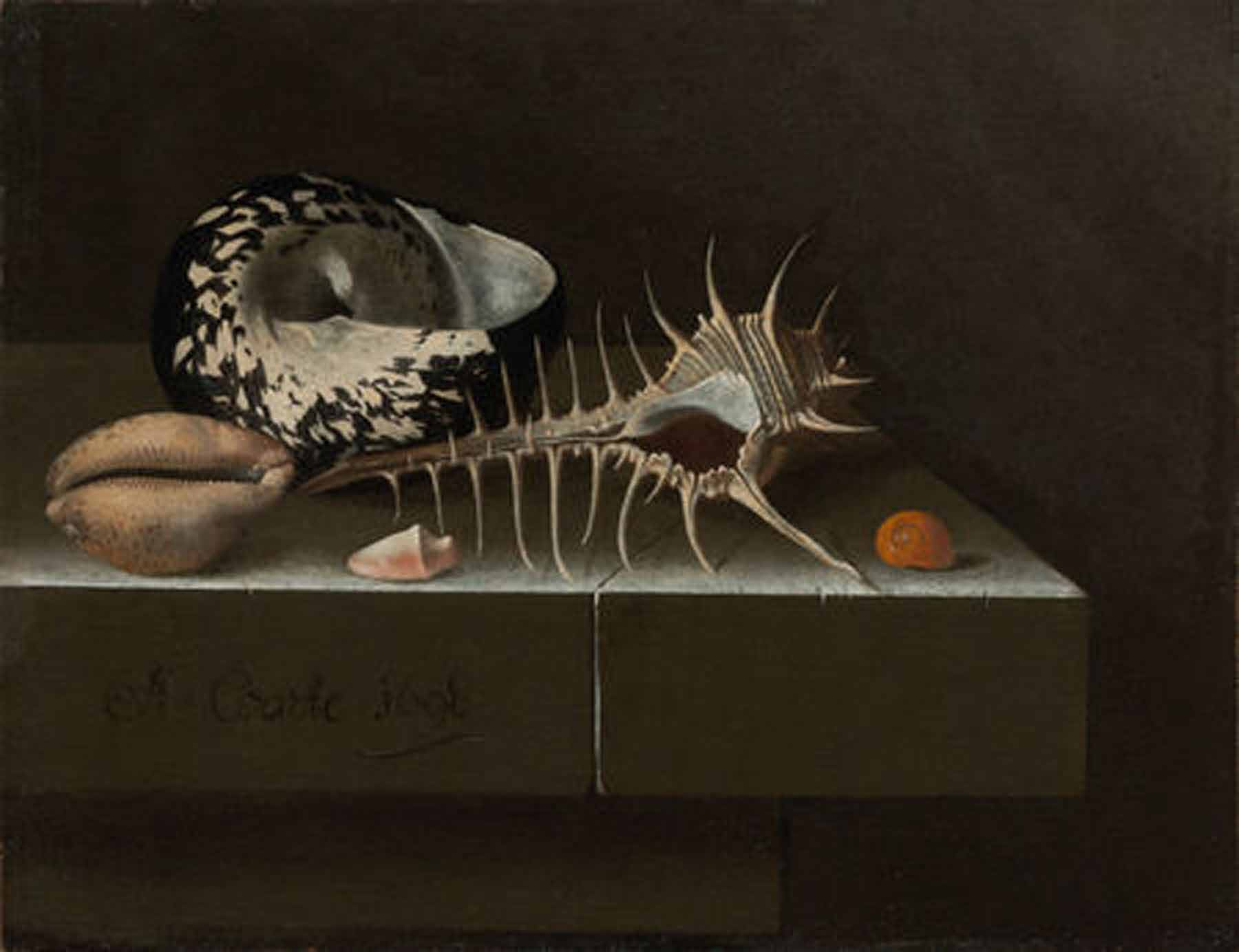 Adriaen Coorte (1659/1664–1707). Still Life with Seashells, 1698. Oil on paper mounted on panel. 6 3/4 × 8 3/4 inches (17.2 × 22.2 cm). The Rose-Marie and Eijk van Otterloo Collection. Image courtesy Museum of Fine Arts, Boston