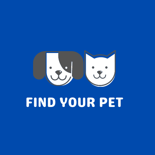 Find Your Pet