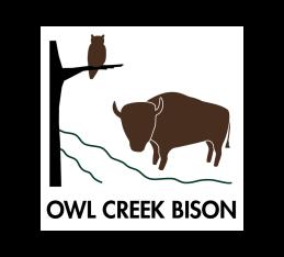 Owl Creek Bison
