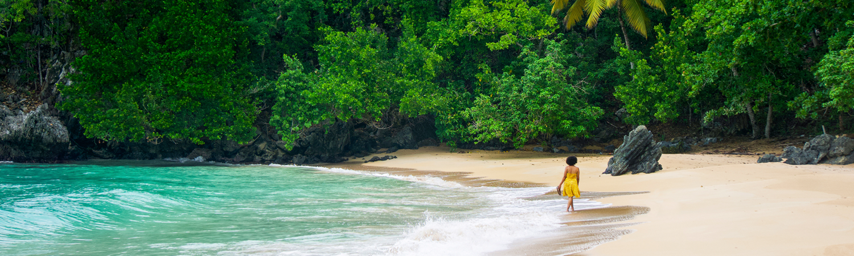 Land, Nature, Outdoors, Shoreline, Water, Sea, Person, Coast, Beach, Island