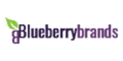 Blueberry Brands promo codes